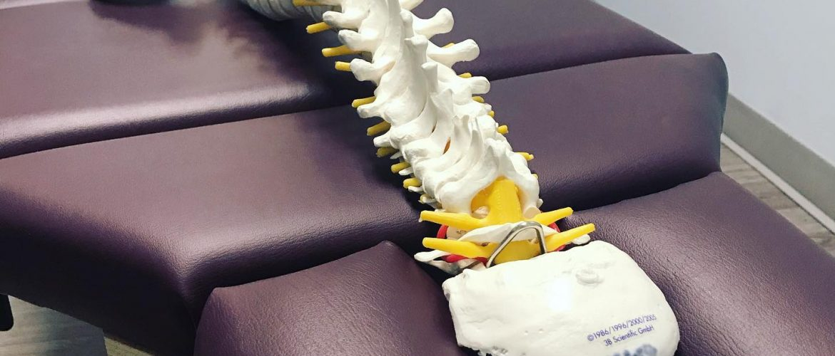 Guelph rehab centre physiotherapy massage therapy chiropractic back pain Dr. Shannon Webster